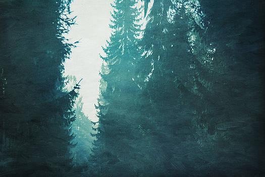 Light coming through Fir trees in mist by Dirk Wuestenhagen