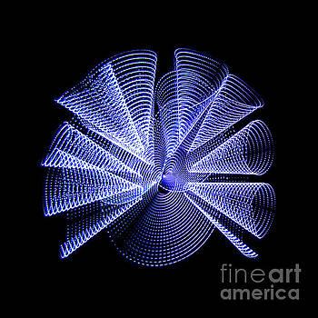 Light Curlers by Brian Jones
