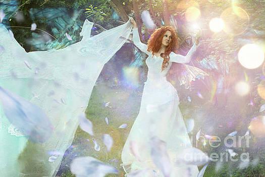 Light fairy by Angel Tarantella