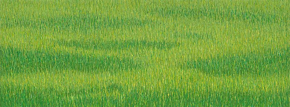 Light Green Grassland 3 by Kenneth Ober