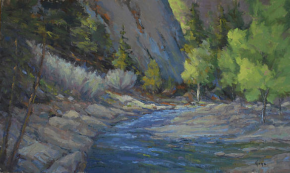 Light in St Vrain Canyon by Gary Gore