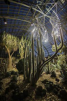 Light Installation In The Desert by Sven Brogren