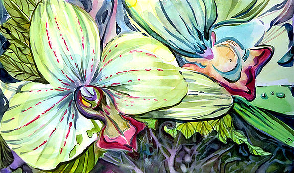 Light of Orchids by Mindy Newman