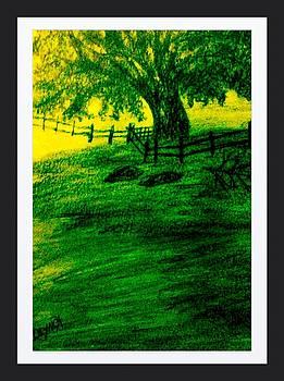 Light Of Summer by Debra Lynch