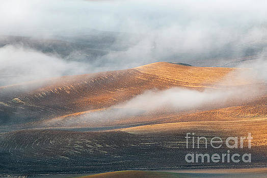 Light on the Hills by Mike Dawson