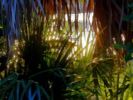 Light Plays on Palms by Tawes Dewyngaert