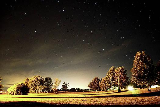 Light Pollution by Paki O'Meara