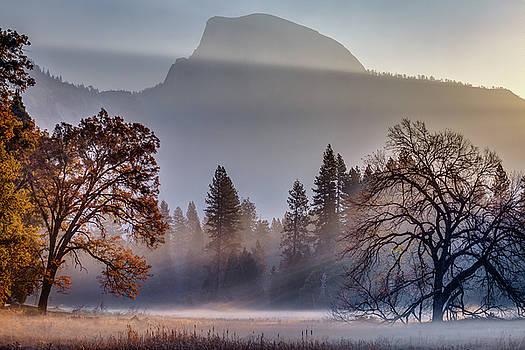 Light Rays in Yosemite Ground Fog by Jeff Sullivan