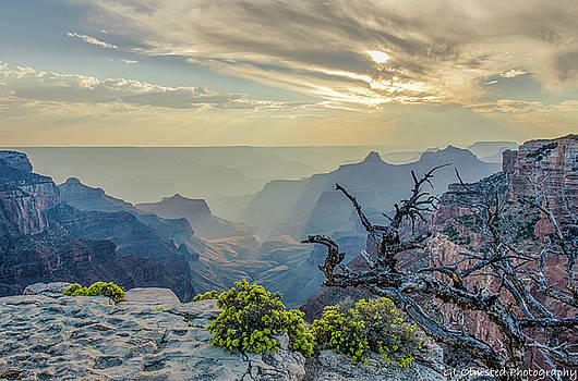 Light seeks the depths of Grand Canyon by Gaelyn Olmsted
