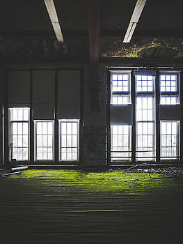 Light Shining Through Abandoned Building With Green Carpet by Dylan Murphy