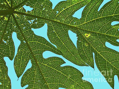 Elizabeth Hoskinson - Light through the Leaves