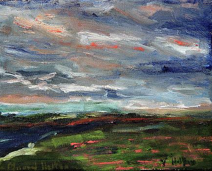 Light Upon the Marsh by Michael Helfen