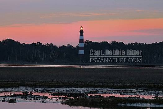 Lighthouse 1386 by Captain Debbie Ritter