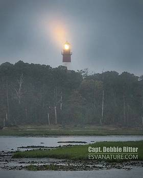 Lighthouse 7990 by Captain Debbie Ritter