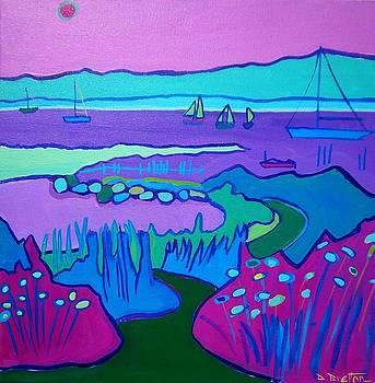 Lighthouse Beach Path Edgartown by Debra Bretton Robinson