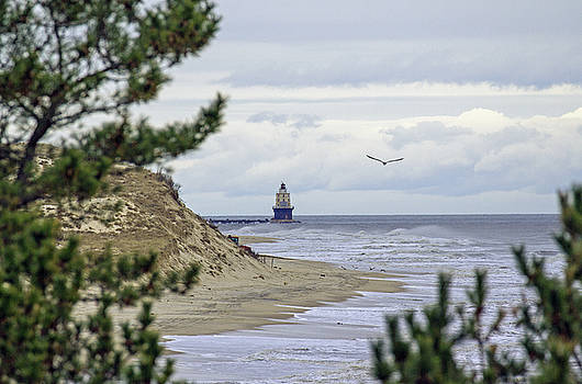 Allan Levin - Lighthouse from top of the sand dunes.