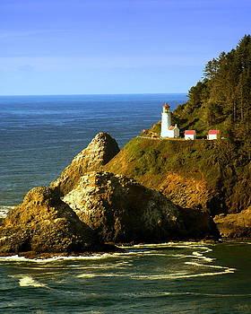 Marty Koch - Lighthouse on the Oregon Coast
