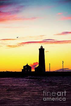 Svetlana Sewell - Lighthouse