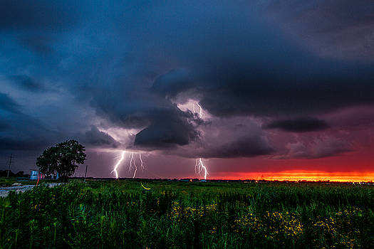 Lightning Bugs - Firefly and Lightning at Sunset in Oklahoma by Sean Ramsey