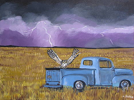 Lightning Storm by Aleta Parks