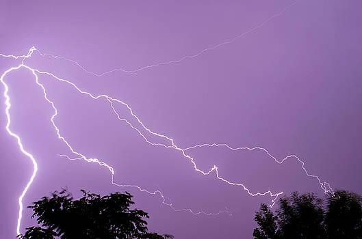 Lightning storm purple sky by Jacqueline Moore