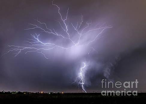 Lightnings in Amarillo by Valentina Abinanti