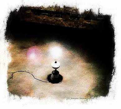 Lights in Strange Places by Lenore Senior