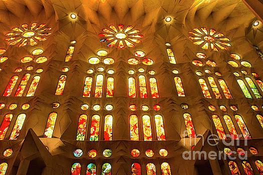 Lights of Gaudi by Reynaldo Brigantty