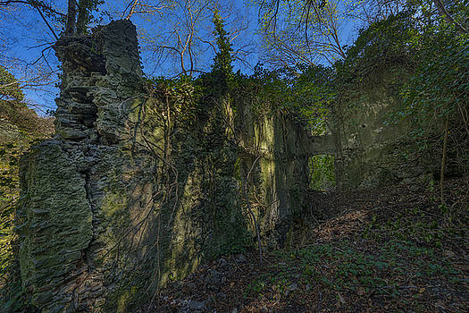 Enrico Pelos - LIGURIAN JUNGLE COVERING UP OLD MILL RUINS