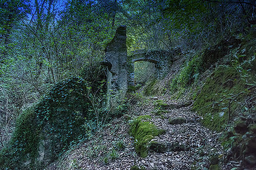 Enrico Pelos - LIGURIAN JUNGLE COVERING UP OLD MILL VALLEY ENTRANCE ARCH RUINS