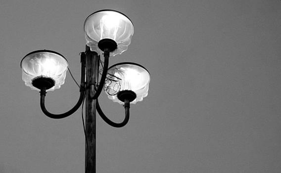 Like a moth to a flame by Vishakha Bhagat
