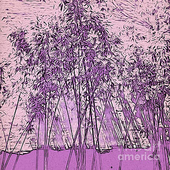 Onedayoneimage Photography - Lilac Bamboo Garden