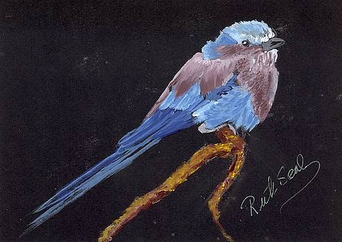 Lilac Breasted Roller by Ruth Seal