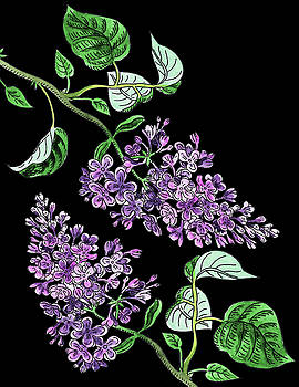 Lilac Flowers Watercolour  by Irina Sztukowski