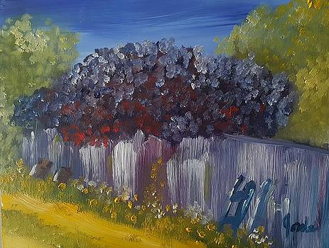 Lilacs on a Fence  by Steve Jorde