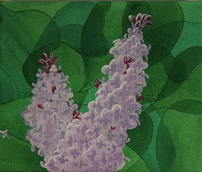 Lilacs by Paul Amaranto