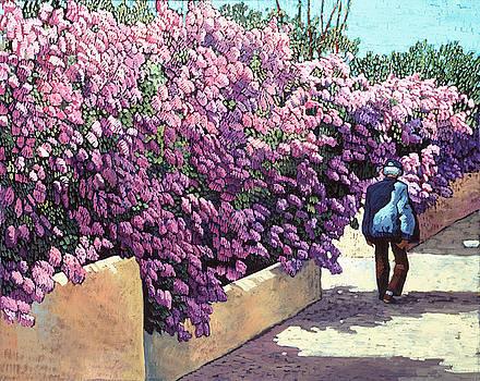 Lilas de Taos by Donna Clair