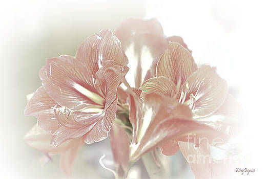 Lilies  by Karry Degruise