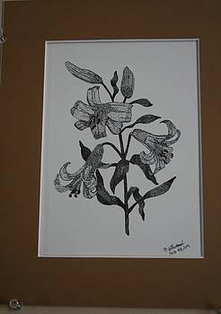 Lillies by Brandy LeBlue