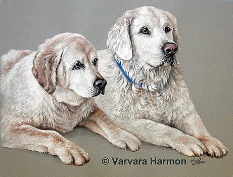 Lilly and Brady by Varvara Harmon