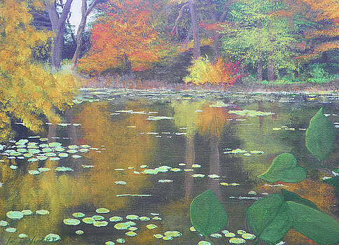 Lilly Pads On Pond by James Violett II