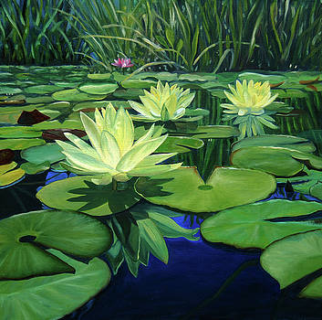 Lillypads and Reflections by Nancy Viola