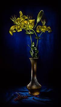 Lily by Alexey Kljatov