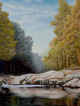 Sam Davis Johnson - Lily Creek on Cumberland Lake