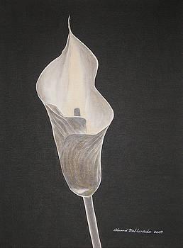 Lily by Edward Maldonado