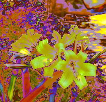 Lily Glow Yellow by M Diane Bonaparte