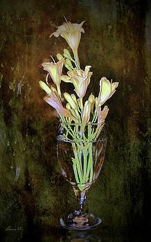 Lily Grunge by Bonnie Willis