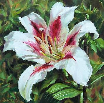 Lily Impression by Donna Munsch