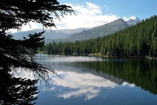 Lily Lake by Donna Whitsitt