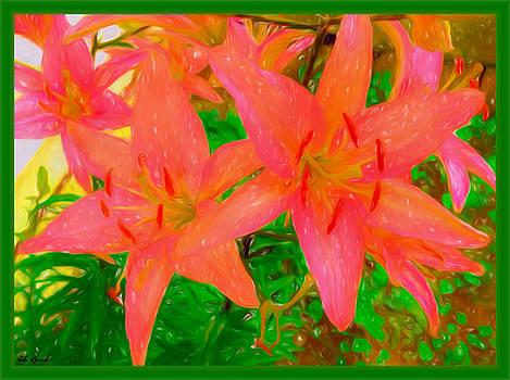 Lily Of Delight by Debra Lynch
